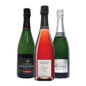Holiday Grower Champagne Mix